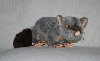 NEW* AUSTRALIAN BRUSHTAIL POSSUM SOFT STUFFED ANIMAL PLUSH TOY 30cm