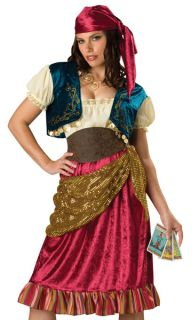 Womens Gypsy Fortune Teller Adult Halloween Costume