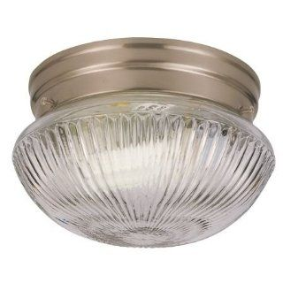 Sea Gull   Ceiling Light   5920 962