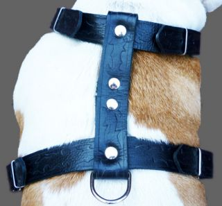 Brown Leather Dog Walking Harness Large XLarge 27 37