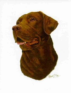 Chocolate Labrador Retriever Dog Mouse Pad by Robert J May
