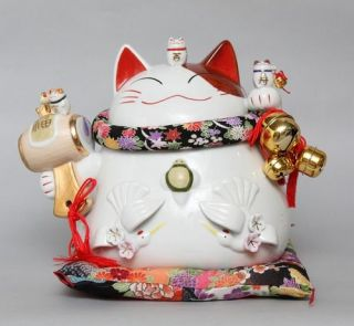 Japanese Lucky Cat Cattery Damo Money Box Bank Large