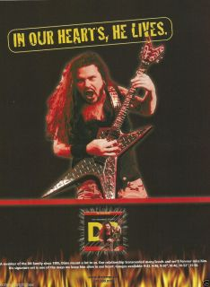 DIMEBAG DARRELL TRIBUTE IN OUR HEARTS HE LIVES DR GUITAR STRINGS PRINT