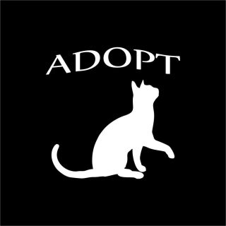 Adopt Cat White Cut Vinyl Car Window Sticker Decal