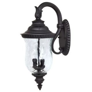 Capital Lighting Ashford Two Light Outdoor Arm Up Wall Lantern in