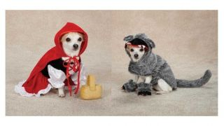 Little Red Riding Hood Big Bad Wolf Costumes for Dogs Halloween Dog