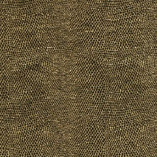 Caspari 2 5 Rolls Gold Black Snake Gift Wrap Wrapping Paper