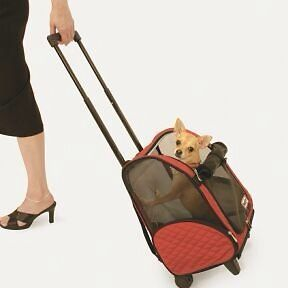 Newly listed Snoozer Roll Around Dog Cat Carrier Red Large New