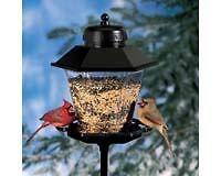 Bird Feeder   Coach Lamp Seed Birdfeeder with Pole