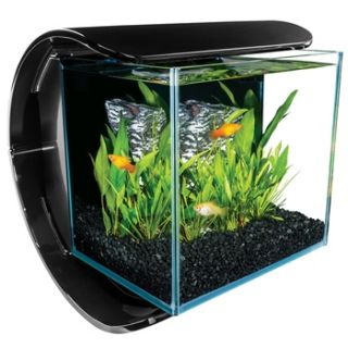 Silhouette Glass 3 Gallon LED Aquarium Kit, 14.2 L X 13.7 W X 12.3 H
