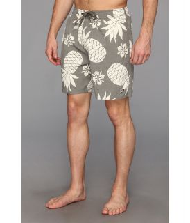 Quiksilver Waterman Pina Volleys Mens Swimwear (Brown)